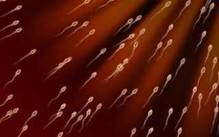 Как увеличить количество спермы: советы и методы лечения