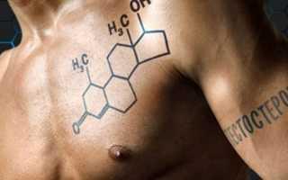 Индекс свободного тестостерона, как измерить?: норма, анализы