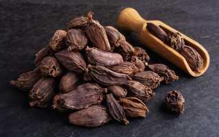 Кардамон: полезные свойства для мужчин и женщин, рецепты, противопоказания