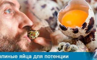 Коктейль для потенции: в домашних условиях из перепелиных яиц