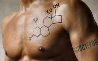 Общий анализ крови на тестостерон мужчинам и женщинам