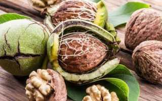 Грецкий орех от простатита, рецепт, отзывы , помогает ли