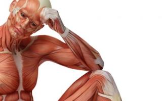 Физические упражнения при аденоме и простатите у мужчин – лечебная гимнастика