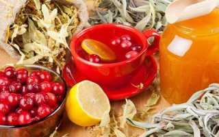 Натуральные средства для повышения потенции у мужчин: настойки, отвары, чаи